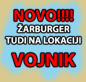 Zarburger vojnik